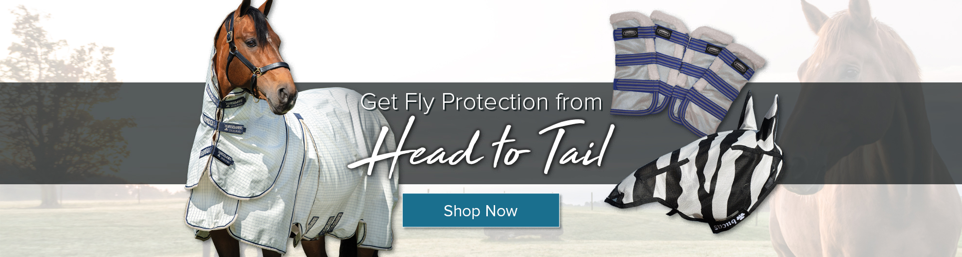 equine fly protection