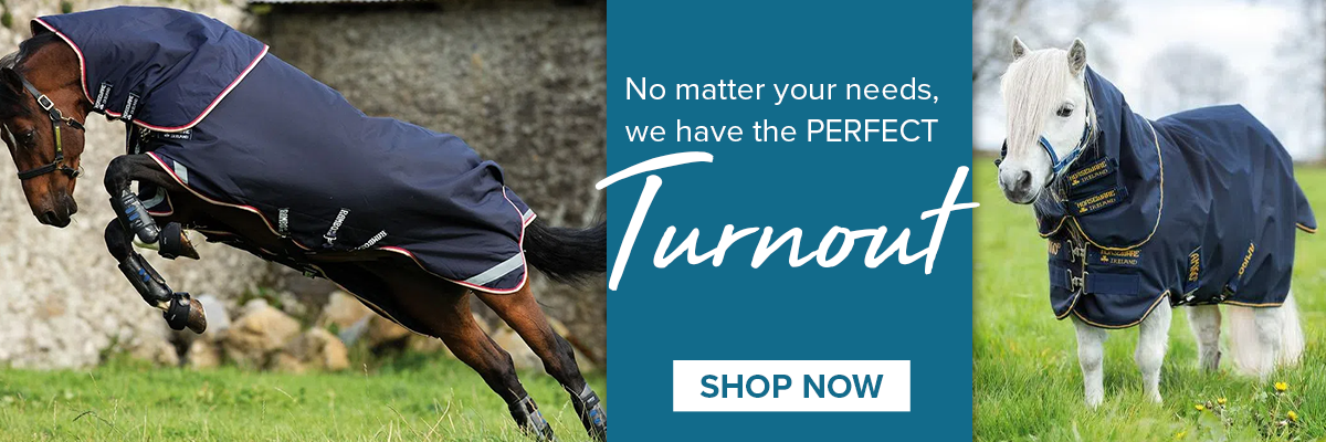 Turnouts from Top Horse Blanket Brands