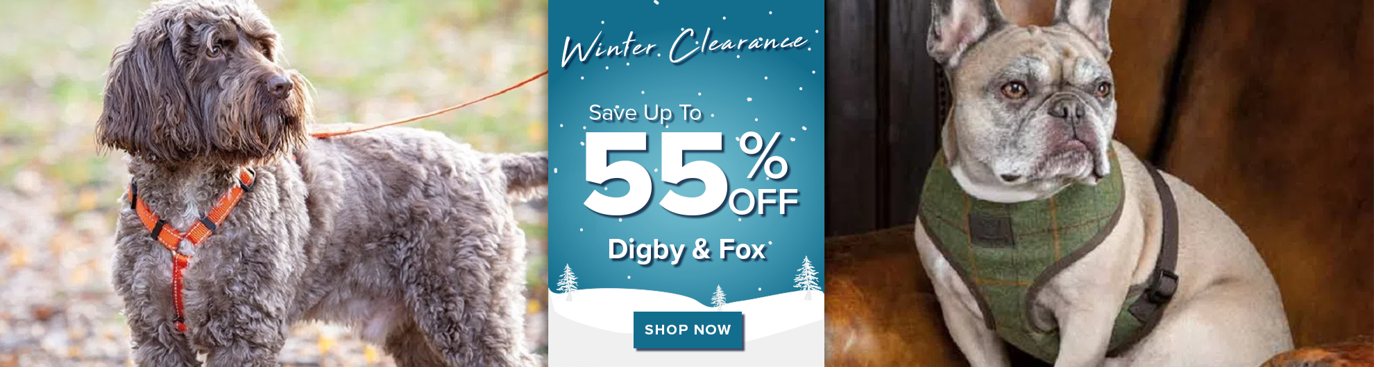 Digby and Fox on Sale